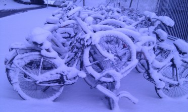 snow cycles